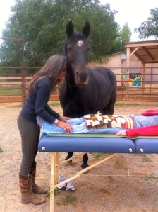 Equine Assisted...