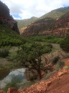 Delores River